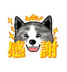 秋田犬LOVE 2(個別スタンプ:7)