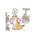 秋田犬LOVE 2(個別スタンプ:12)