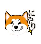 秋田犬LOVE 2(個別スタンプ:15)