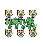 秋田犬LOVE 2(個別スタンプ:33)