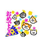 秋田犬LOVE 2(個別スタンプ:34)