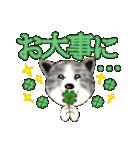 秋田犬LOVE 2(個別スタンプ:36)