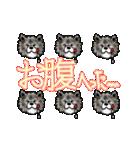 秋田犬LOVE 2(個別スタンプ:37)