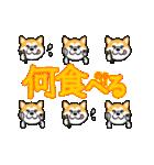 秋田犬LOVE 2(個別スタンプ:38)