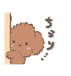 ふわふわプードルのチャッピーくん(個別スタンプ:03)