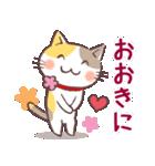 ミケとサビ(関西弁)(個別スタンプ:01)