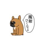 ぴよぴよ夫婦8 halloween /Xmas /年末年始(個別スタンプ:20)