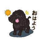 気軽にアメコカ(ブラック) 行動編(個別スタンプ:01)