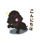 気軽にアメコカ(ブラック) 行動編(個別スタンプ:03)