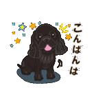 気軽にアメコカ(ブラック) 行動編(個別スタンプ:04)