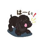 気軽にアメコカ(ブラック) 行動編(個別スタンプ:07)