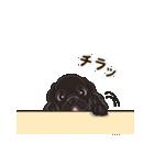 気軽にアメコカ(ブラック) 行動編(個別スタンプ:13)