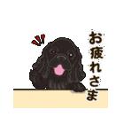 気軽にアメコカ(ブラック) 行動編(個別スタンプ:16)