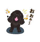 気軽にアメコカ(ブラック) 行動編(個別スタンプ:21)