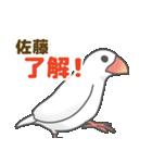 【佐藤専用】文鳥さんスタンプ(個別スタンプ:10)