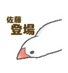 【佐藤専用】文鳥さんスタンプ(個別スタンプ:19)