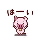 こぶたんスタンプ(個別スタンプ:01)