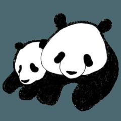 パンダとくまちゃん