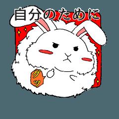 まん丸だけど心強いアンゴラウサギ