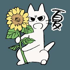 しかるねこ6(夏編)