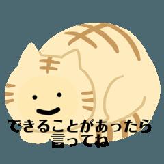 はげましネコ①うつ病パニック障害励ます猫