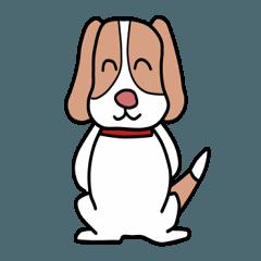 ビーグル犬のれもんちゃん