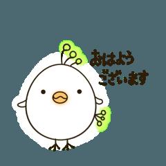 [LINEスタンプ] ほんわかタマゴ鳥