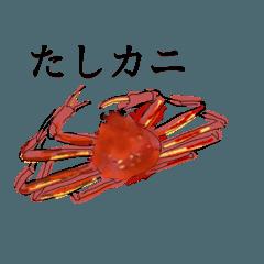 Tashi Kani 〜サワガニからズワイまで〜