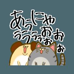 犬っぽいイッヌと猫っぽいネッコ