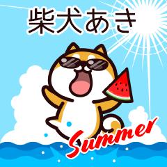 柴犬あきの夏