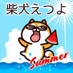 柴犬えつよの夏
