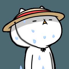【激動‼】吾輩は猫です。夏