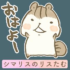 [LINEスタンプ] 毎日使えるスタンプ〜きほんのき〜