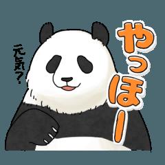 ゆったりパンダ2
