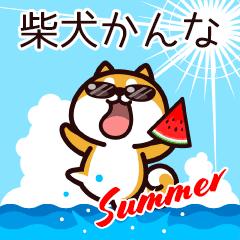 柴犬かんなの夏