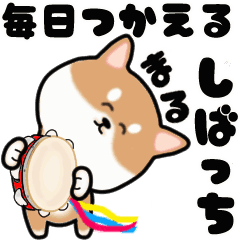 [LINEスタンプ] まる柴っち!