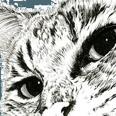 山田猫&動物 - 英語版 vol.9