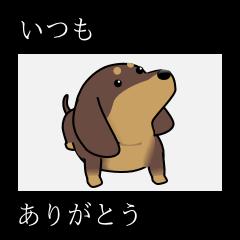 犬好きが作ったらこれができた。ダメ? 3