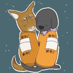 聴導犬アーミと引退犬レオン