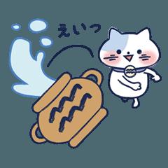 十二星座猫シリーズ~水瓶座~