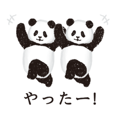 今日のパンダ(毎日)