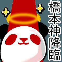 橋本■面白パンダ名前スタンプ