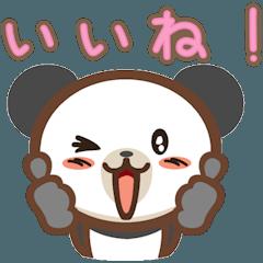 かわいいパンダ 日常生活