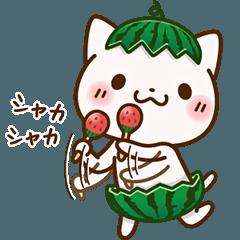 ごきげん♪猫さん【夏】