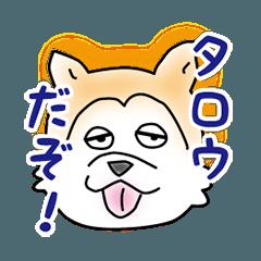 秋田犬のタロウのほのぼのスタンプ