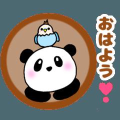 ぽちゃ可愛いパンダさん☆毎日使える日常語