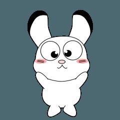 いつも元気な子供ウサギで会話
