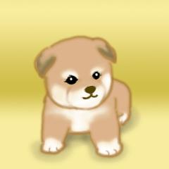 [LINEスタンプ] よちよち秋田犬2(心遣い)の画像(メイン)