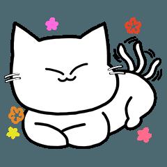 白猫エラです。