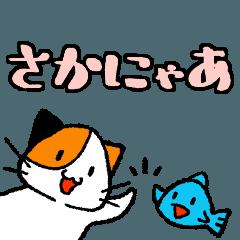 [LINEスタンプ] さかにゃあ (1)